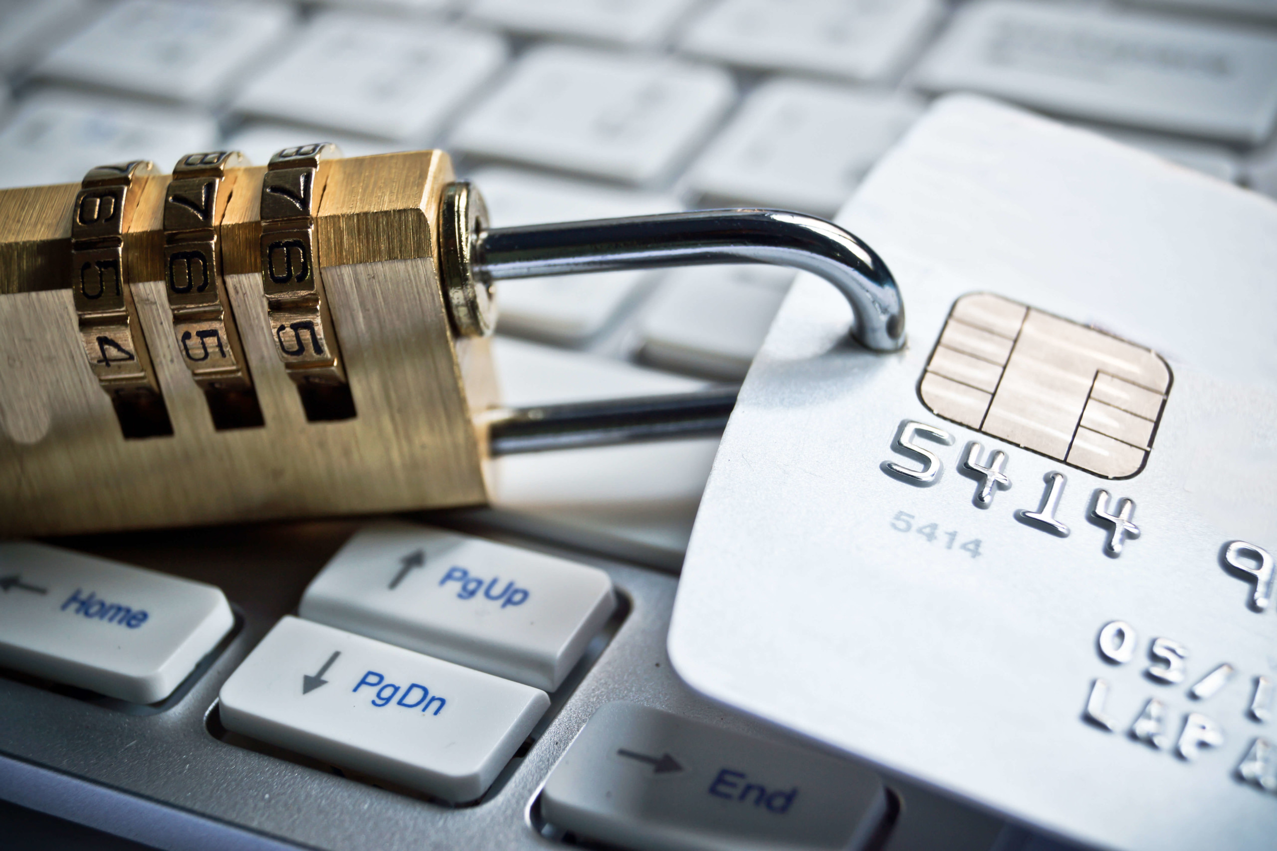 Looking for fraud and chargeback protection? We have creative solutions to help you and your business.